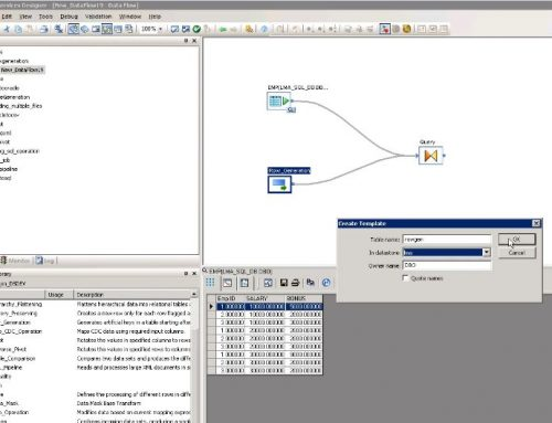 SAP BO Data Services Tutorial: Rowgen